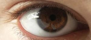 nintendo_ojo