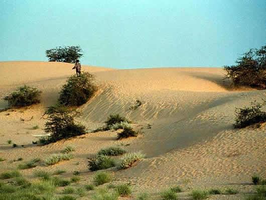 Predicar en el desierto sermón perdido