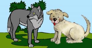Los lobos y los perros alistándose a luchar