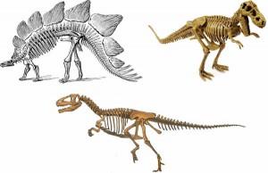 Algunos dinosaurios tenían los huesos muy grandes para soportar su peso