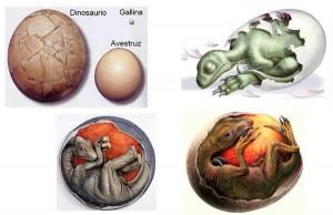 Los dinosaurios nacían de huevos
