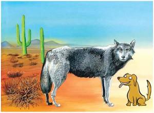 El lobo y el perro dormido. Fabula clásica de Esopo con moraleja