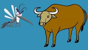 El buey y el mosquito. Fábula clásica de Esopo con moraleja