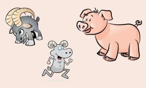 El cerdo y los carneros
