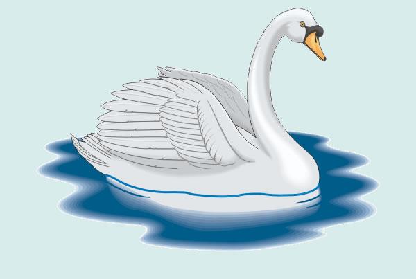 El cisne tomado por ganso. Fábula clásica de Esopo con moraleja