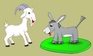La cabra y el asno. Fábula clásica de Esopo con moraleja