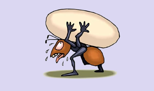 La hormiga. Fábula clásica de Esopo con moraleja