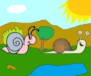 Los caracoles
