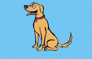 Al perro que no se conoce, no se le toca el rabo