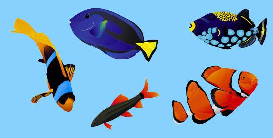 El pescador y los peces pequeños y grandes