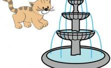 Bajando de la fuente del gato. Canciones infantiles para niños