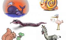 Adivinanzas sobre los animales con sus respuestas, segunda parte II