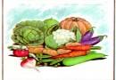 El jardinero y las hortalizas. Fábula de Esopo con moraleja